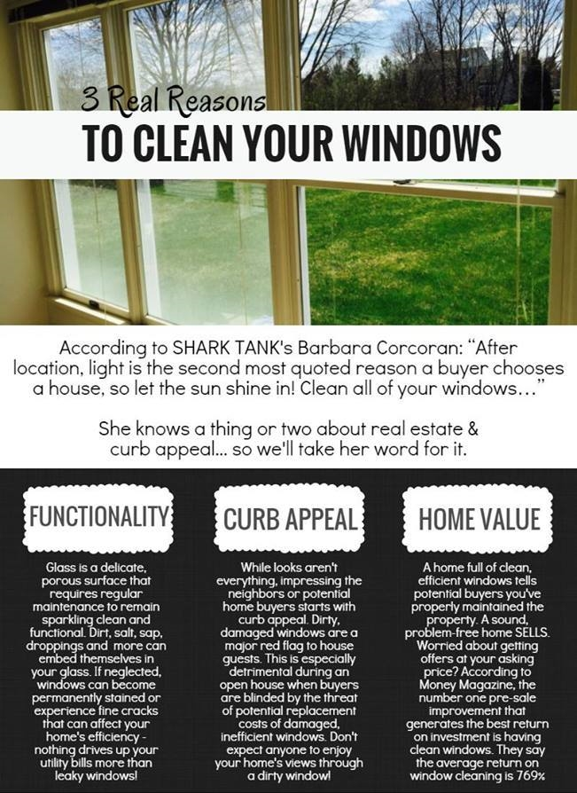 reasons to clean your windows